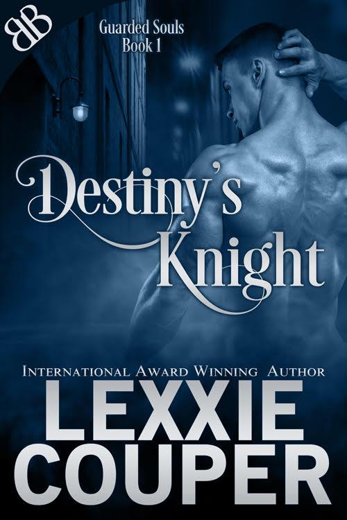 Destinys Knight